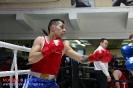 Турнир Ударная сила 10 20-24 апреля 2016 клуб бокса Ударник_18