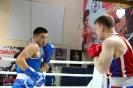 Турнир Ударная сила 10 20-24 апреля 2016 клуб бокса Ударник_29