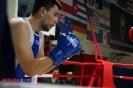 Турнир Ударная сила 10 20-24 апреля 2016 клуб бокса Ударник_2