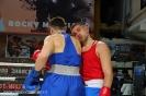 Турнир Ударная сила 10 20-24 апреля 2016 клуб бокса Ударник_30