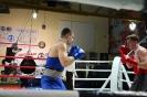 Турнир Ударная сила 10 20-24 апреля 2016 клуб бокса Ударник_59