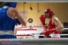 Турнир класса Б, посвященный олимпийским чемпионам Степашкину С.И., Лагутину Б.Н., Григорьеву О.Г. _29