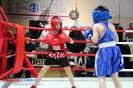 Турнир Ударная сила 9 15-16 апреля 2016 БК Ударник день 1_12