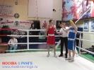 Открытый ринг - боксерский клуб Ударник Волгоградский проспект 14 мая 2016_36