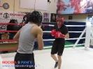 Открытый ринг - боксерский клуб Ударник Волгоградский проспект 14 мая 2016_38