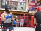 Открытый ринг - боксерский клуб Ударник Волгоградский проспект 14 мая 2016_40
