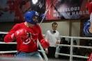 Открытый ринг в клубе Ударник на Волгоградском проспекте 23 января 2016_20