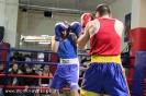 Открытый ринг по боксу в БК Ударник 30 ноября 2014_46