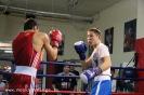 Открытый ринг по боксу в БК Ударник 30 ноября 2014_50