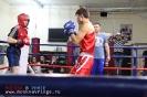 Открытый ринг по боксу в БК Ударник 30 ноября 2014_55