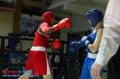 Открытый ринг по боксу в БК Ударник 30 января 2016 _18