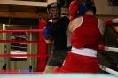 Открытый ринг по боксу в БК Ударник 30 января 2016 _27