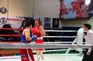 Открытый ринг по боксу в БК Ударник 30 января 2016 _2