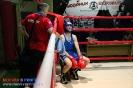 Открытый ринг по боксу в БК Ударник 30 января 2016 _32