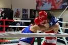 Открытый ринг по боксу в БК Ударник 30 января 2016 _3