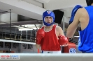 Открытый ринг по боксу в БК Ударник на Кожуховской 20 октября. (2)_6